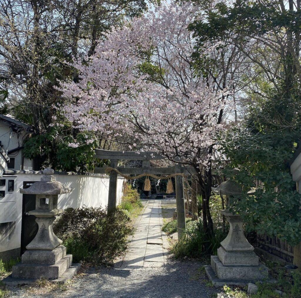 京都御所 宗像神社
